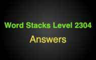 Word Stacks Level 2304 Answers