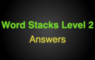 Word Stacks Level 102 Answers