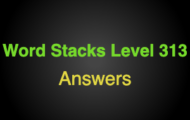 Word Stacks Level 313 Answers