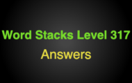 Word Stacks Level 317 Answers