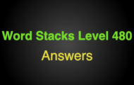 Word Stacks Level 480 Answers