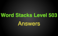 Word Stacks Level 503 Answers