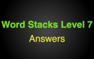 Word Stacks Level 107 Answers