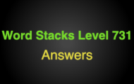 Word Stacks Level 731 Answers