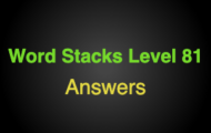 Word Stacks Level 81 Answers
