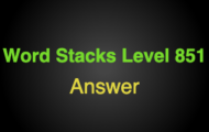 Word Stacks Level 851 Answers
