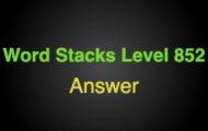 Word Stacks Level 852 Answers