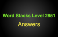Word Stacks Level 2851 Answers