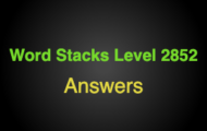 Word Stacks Level 2852 Answers