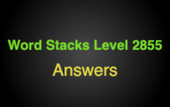 Word Stacks Level 2855 Answers