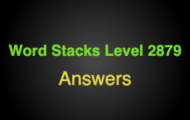 Word Stacks Level 2879 Answers