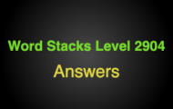 Word Stacks Level 2904 Answers