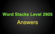 Word Stacks Level 2905 Answers