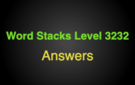 Word Stacks Level 3232 Answers