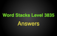 Word Stacks Level 3835 Answers