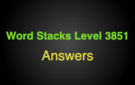 Word Stacks Level 3851 Answers