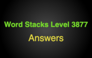 Word Stacks Level 3877 Answers