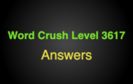 Word Crush Level 3617 Things you might knit  Answers