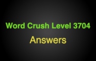 Word Crush Level 3704 Words that end with 'ne'  Answers